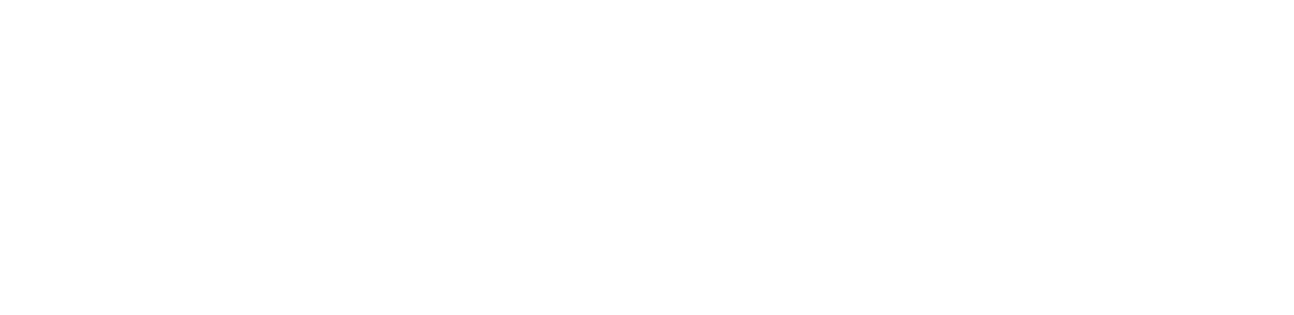USC Marshall School of Business Logo White